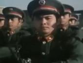 《陆军见习官》高清完整版